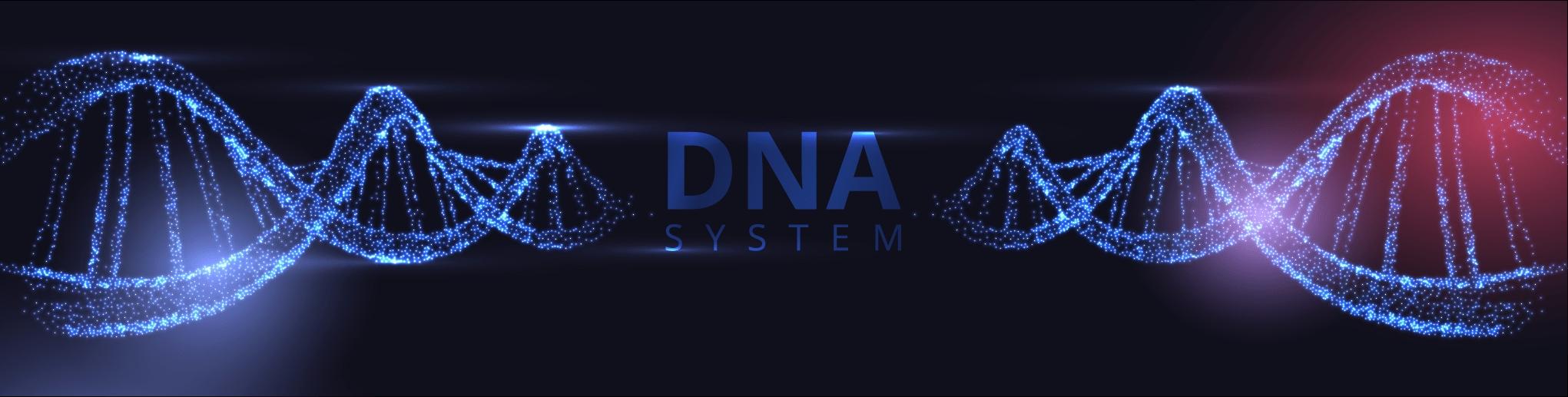 DNA geslachtsbepaling